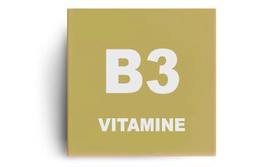 Vitamine B3 (niacine)