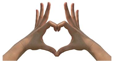 Comment préserver l'équilibre cardio-vasculaire ?