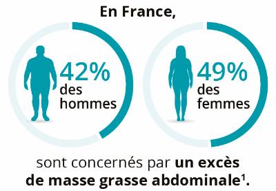 Masse grasse abdominale en France